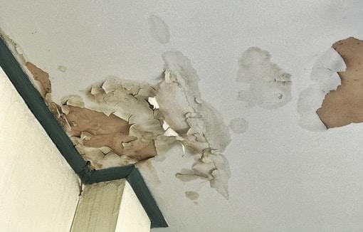 leak detection in ceiling