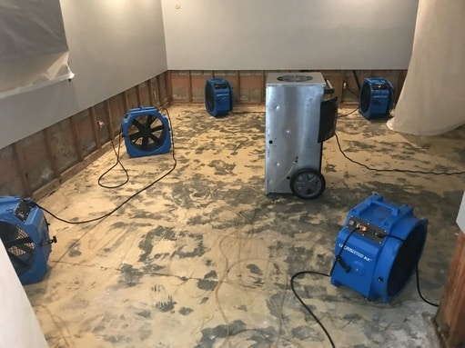 water damage dry down